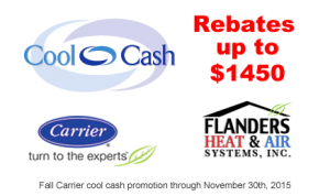 Carrier-Fall-Rebate